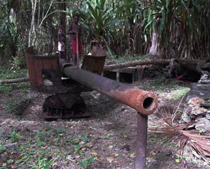 Nusa Lavu Gun