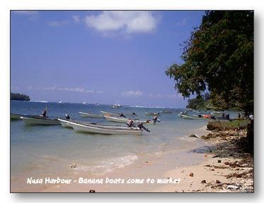 Nusa_Harbour
